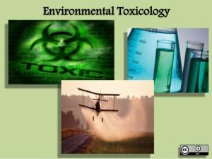 environmental-toxicology-1-638